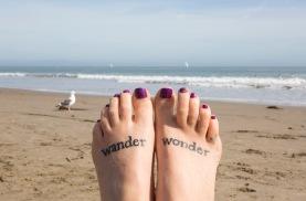 On the beach in Santa Cruz.